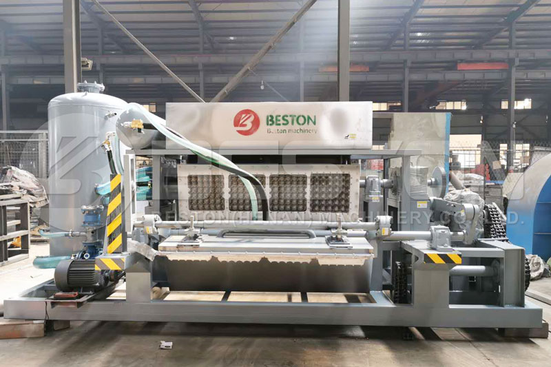 BTF-4-4 Beston Egg Tray Plant for Sale