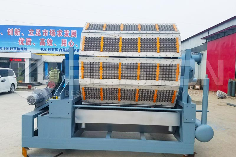 BTF-5-12 Beston Paper Egg Tray Machine for Sale