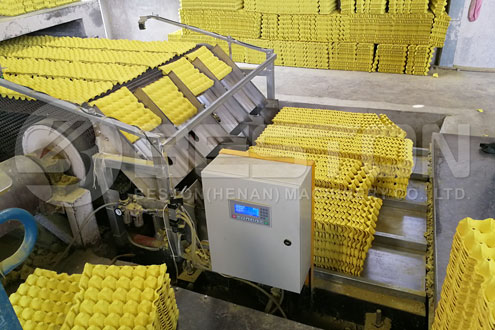 Máquina Empacotadora de Bandejas de Ovos