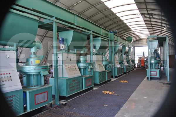 Biomass Pellet Making Machine in the US