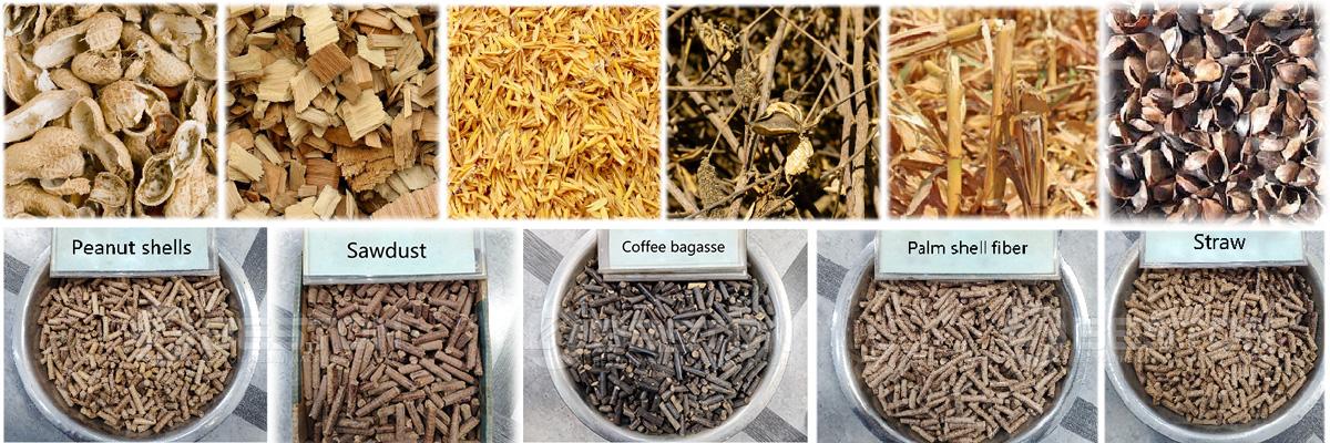 Biomass Waste and Biomass Pellets