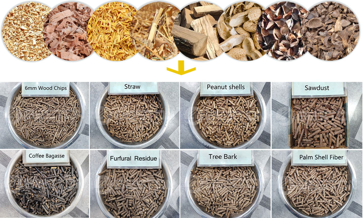 Biomass Waste at Pellets