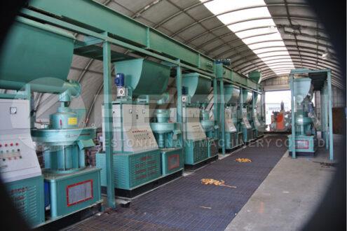 12 Sets de Beston Pellet Making Machines na América