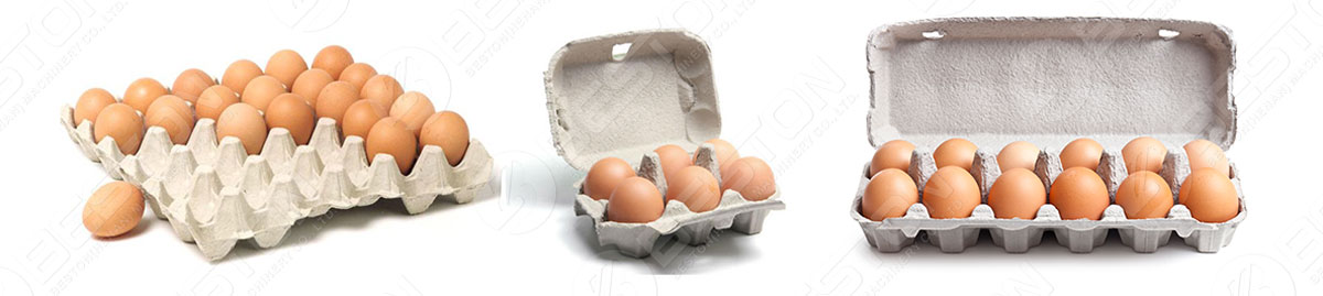 Egg Tray Products