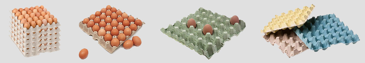 Manufacture Different Egg Trays