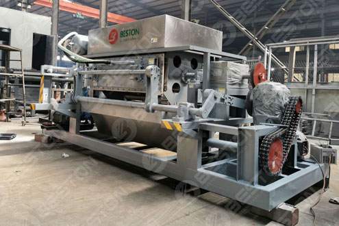 Beston Ovum Tray automatic Apparatus