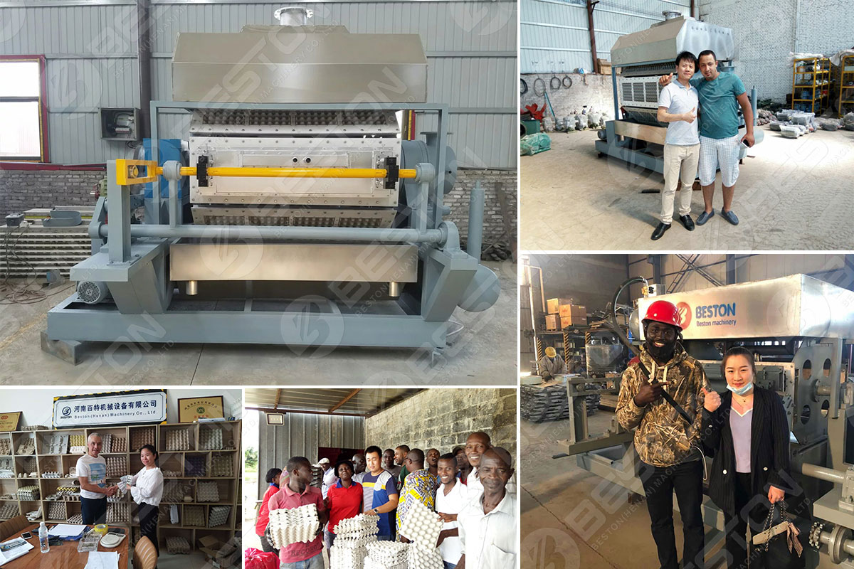 Customers Got Competitive Egg Tray Making Machine Price from Beston