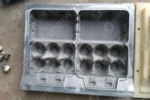 Egg Carton Mold