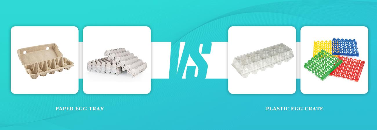 Paper Egg Tray VS Plastic Egg Tray